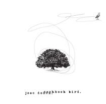 jose-album-cover